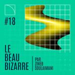 Le Beau Bizarre #18 Avec Vincent Baudriller à Lausanne