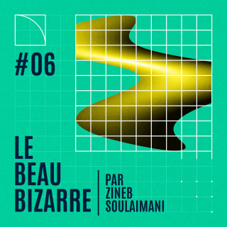Le Beau Bizarre #6 avec Kevin Jean  Elisa Monteil et Raphaël Mouterde