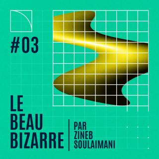 Le Beau Bizarre #3 avec Camille Froidevaux-Metterie et Martin Page